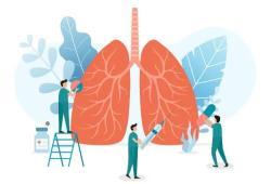 呼吸道感染常见病毒与检测方案精析(上)