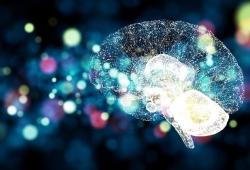 Neurology :遗传性vs散发性血管瘤,破裂风险哪个高?