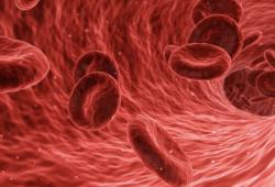 """颠覆认知!Science子刊揭示红细胞""""新身份"""":不仅是氧气""""搬运工"""",还是人体免疫""""哨兵"""""""