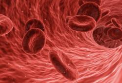 """重大发现!与穴位密切相关!中国科学家团队首次发现人体存在""""组织液循环网络"""""""
