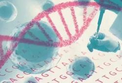 Clin Trans Gastroenterology:诱导治疗后高阿达木单抗药物水平可预测克罗恩病患者第 24 周的疾病生物学缓解