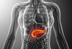 DigDisSci:慢性胰腺炎患者骨相关疾病病的患病率和危险因素分析