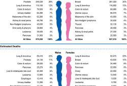 重磅发现 | 神刊CA公布美国癌症死亡率下降原因!