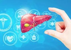 """J Gastro: 糖尿病患者<font color=""""red"""">肝细胞</font>癌的发生几率分析"""