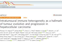 Nat Commun:肿瘤内免疫异质性(ITH):肝细胞癌发生发展及肿瘤进化的标志