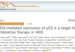 "Nat Commun:BRD4介导p53<font color=""red"">抑制</font><font color=""red"">作用</font>是急性髓性白血病的联合治疗靶标"