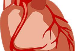 Heart:油炸食品摄入量与心血管疾病和全因死亡风险的关系