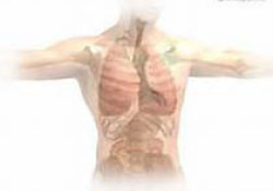 "NEJM:吸入曲前列尼尔治疗间质性肺疾病引起<font color=""red"">肺动脉</font><font color=""red"">高压</font>的疗效分析"