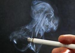 """Nat Med:烟草控制<font color=""""red"""">政策</font>对全球吸烟率的影响"""