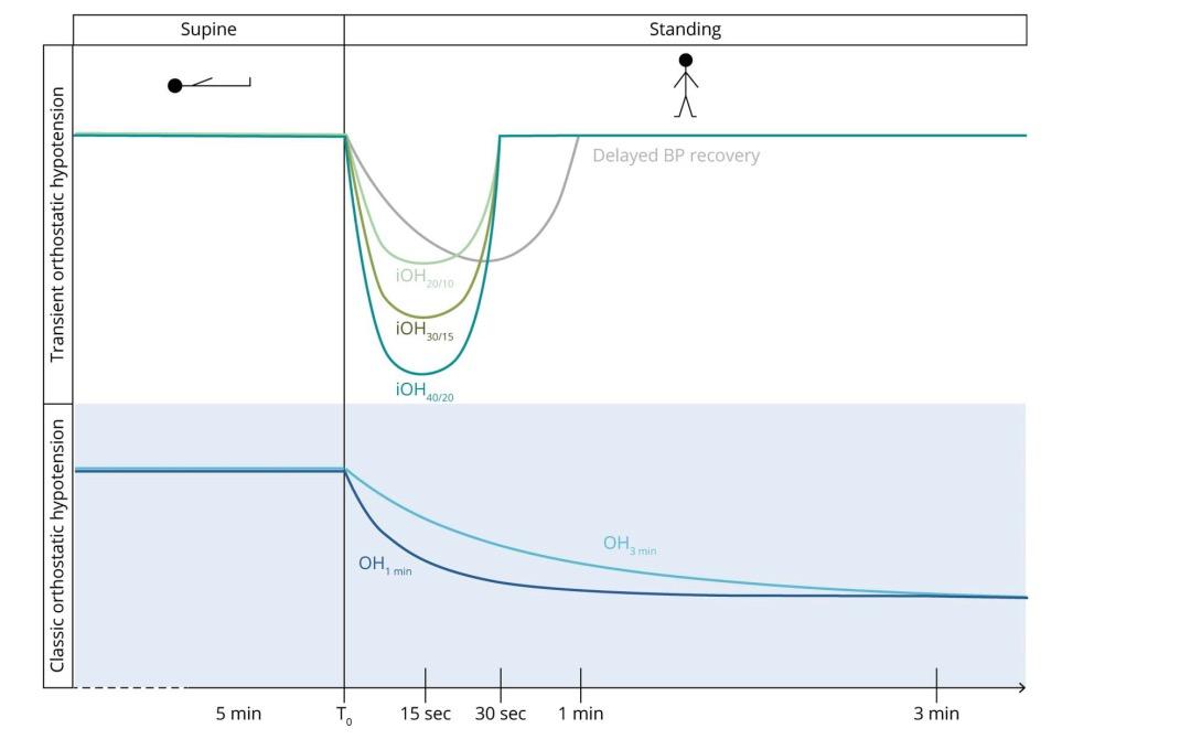 短暂性体位性低血压和帕金森患者的跌倒晕厥息息相关