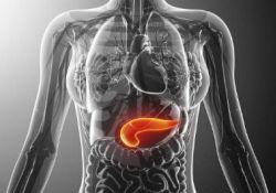 "Clin GastroenterologyH: 早期和晚期特发性<font color=""red"">慢性</font>胰腺炎患者在症状发作时的年龄差异和遗传变异的影响"