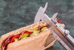 JAMA子刊:吃货福利——无需管住嘴,创新药有望实现减脂增肌降血糖!