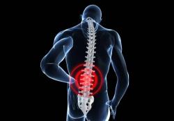 "Stroke :新指标可区分自发性脊髓梗死和急性脊髓<font color=""red"">炎</font>"