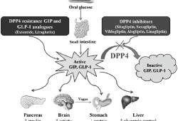 ASCO GU 2021: DPP4抑制剂对糖尿病合并前列腺癌患者PFS的影响