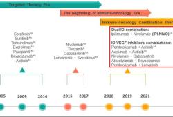 ASCO GU 2021: 纳武利尤单抗+伊匹单抗联合治疗转移性肾细胞癌的疗效