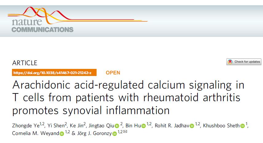 Nat Commun:花生四烯酸调节类风湿关节炎患者T细胞的钙信号传导促进滑膜炎的发生