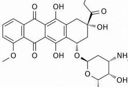 """英国MHRA允许开展阿霉素""""前药""""AVA6000治疗实体瘤的临床试验"""