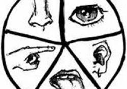 J Laryngol Otol:非过敏性鼻炎患者的反流症状指数与鼻部症状的关系