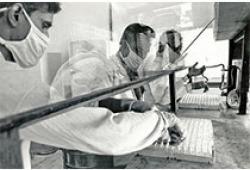 BJU Int:系统靶向治疗复发性肾细胞癌中的辅助舒尼替尼治疗结果