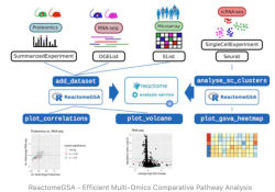 "ReactomeGSA:高效的单细胞<font color=""red"">通路</font>分析工具"