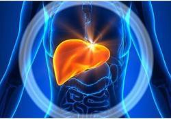 Gut: 入院时肝功能检查异常与新冠病毒感染的严重程度相关