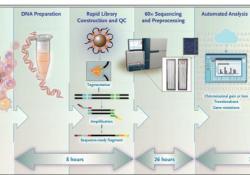 """NEJM:<font color=""""red"""">全</font><font color=""""red"""">基因</font><font color=""""red"""">组</font>测序 vs细胞遗传学检测在髓系肿瘤患者风险分层中的应用"""