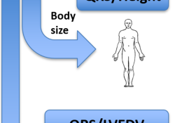 "JAHA:<font color=""red"">心力</font>衰竭患者的电解剖比率与死亡率"