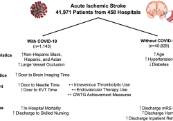 """Stroke:COVID-19患者急性缺<font color=""""red"""">血性</font>脑卒中的特点"""