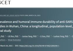 """仅2.7%<font color=""""red"""">的</font>武汉人群产生有效新冠病毒抗体"""