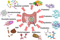 Seminars in Cancer Biology:肠道微生物有助于抗癌免疫调节