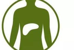 AJG: 体重增加对非肥胖人群非酒精性脂肪肝发病率的影响