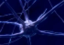 """J Alzheimers Dis:运动能促进大脑<font color=""""red"""">血液</font>流动"""