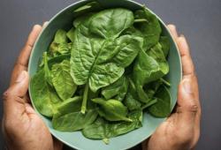Nutrition:想要拥有强健的肌肉,就多吃绿叶蔬菜!
