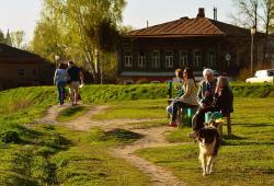 BMJ:老年痴呆患者抑郁症怎么办?宠物陪伴或其他非药物干预治疗值得考虑