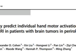 "European Radiology:静息状态的fMRI机器学习预测PRC皮层<font color=""red"">肿瘤</font>患者的个体化手部运动"