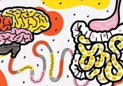 """BrainBehav Immun:<font color=""""red"""">肠道</font><font color=""""red"""">微生</font><font color=""""red"""">物</font>通过迷走神经导致大脑抑郁"""