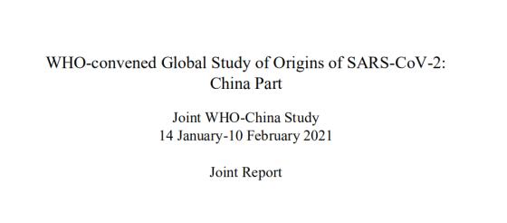 中国-世卫组织新冠病毒溯源报告终于发布!