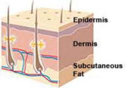 "硫唑<font color=""red"">嘌呤</font>治疗免疫相关性皮肤病专家建议"