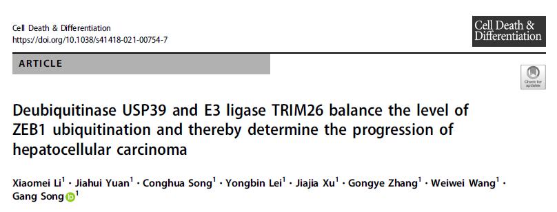 USP39和TRIM26通过拮抗介导ZEB1泛素化水平影响肝细胞癌的发生发展