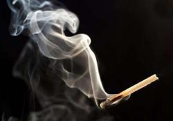 """Biological Psychiatry:是否吸烟和吸烟状态对内在<font color=""""red"""">功能</font>连接的影响"""