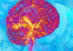 "Brain Connectivity:轻度创伤<font color=""red"">性</font>脑损伤后<font color=""red"">中枢</font>结构-功能连接失匹配"