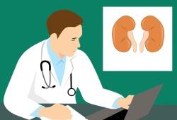 Am J Clin Nutr:膳食蛋白质摄入量、肾功能和存活率:全国代表性队列研究