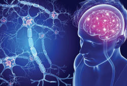 JNNP:临床孤立综合征,脑萎缩者的死亡和残疾率更高