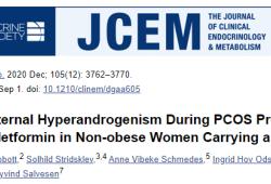 J Clin Endocrinol Metab:二甲双胍并未降低孕期多囊卵巢综合症女性的雄激素水平