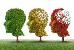 Alzheimer Dementia: 预防认知减退和痴呆,北京在行动!