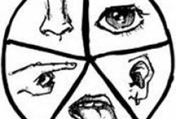 Eur Arch Otorhinolaryngol:口罩如何影响COVID-19大流行期间的鼻窦生活质量?