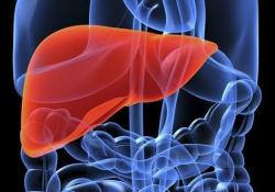 JGH: 肝硬化和肝腹水患者长期服用白蛋白利大于弊