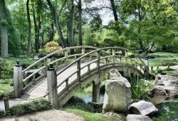 Landsc Urban Plan:大流行期间的花园和绿色空间可改善心理健康