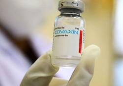"<font color=""red"">BMJ</font>:印度Covaxin疫苗知多少:仓促推出,争议不断"