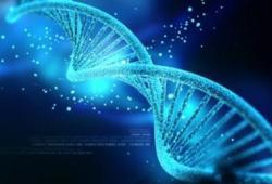 Nat Med: 基因疗法研究要常抓共管、分享共进